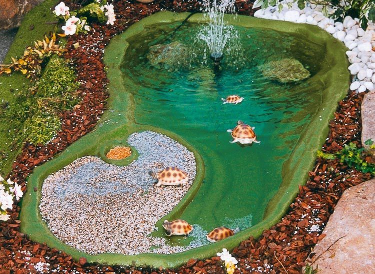 Laghetto x tartarughe ninja cm 185x105 for Laghetti ornamentali