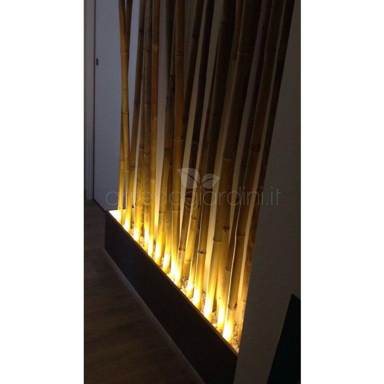 Canne bamb bamboo lunghezza cm 210 for Bambu arredamento