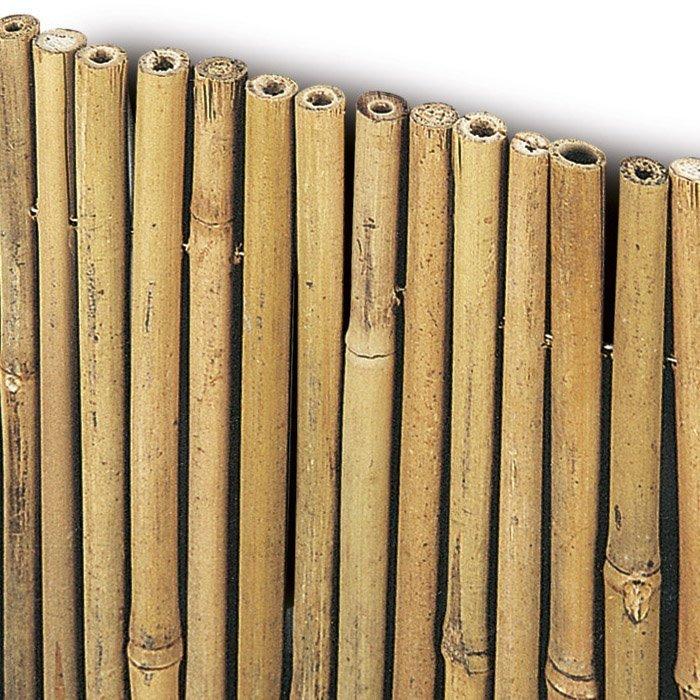 Arella bambu cm 300 x h 250 mm 15 for Canne di bambu per arredamento