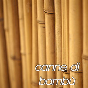 Arredamento per giardino casa e fai da te for Bambu arredamento